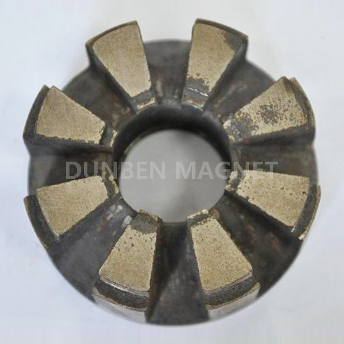 Customized Multi poles Alnico 5 Rotor Magnet