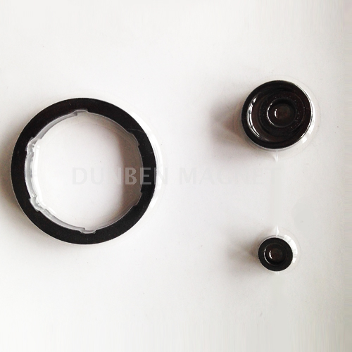 Injection Bonded Plastic Ferrite Magnet for Motor